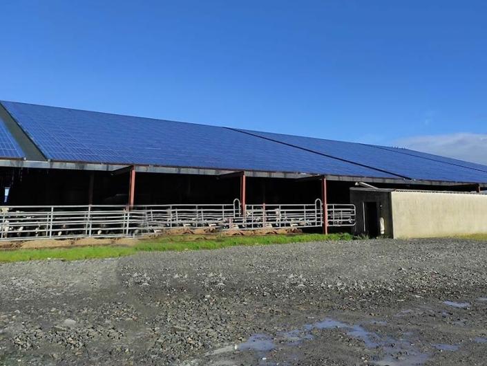 Dépose et repose de modules photovoltaïques sur un bâtiment agricole - ARS Énergie - Photovoltaïque pour les entreprises, panneaux solaires, énergies solaires, centrales, réparation, maintenance, installation, pose,...